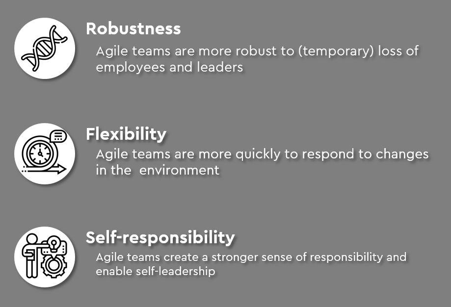 Robustness Flexibility Self Responsibility